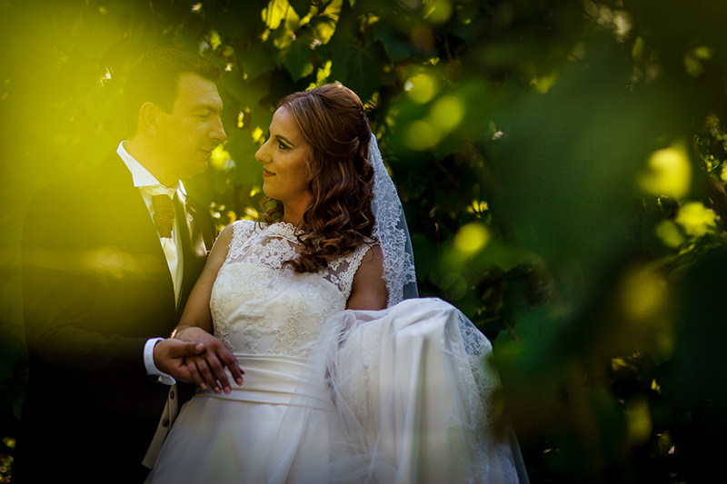nunta-rosiori-de-vede-elena-si-cezar-15