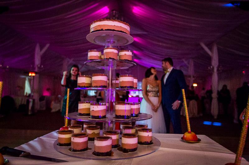 nunta-calarasi-privilege-ballroom-alexandra-si-adrian-79